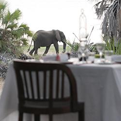 Elephant sighting from Siwandu deck