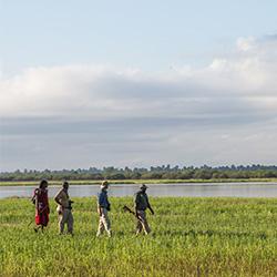 Walking safari at Siwandu