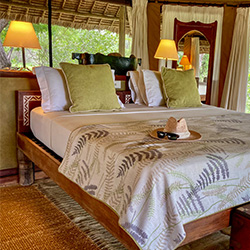 Interior at Siwandu