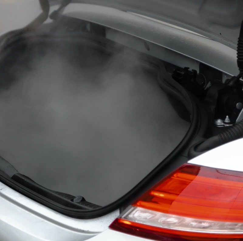 steam cleaning of trunk