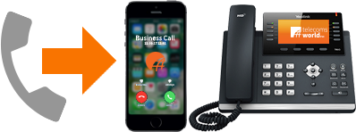 Divert your freephone numbers to any landline or mobile phone