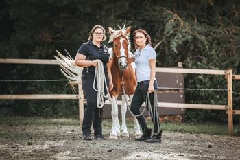 Pferdestärke 2