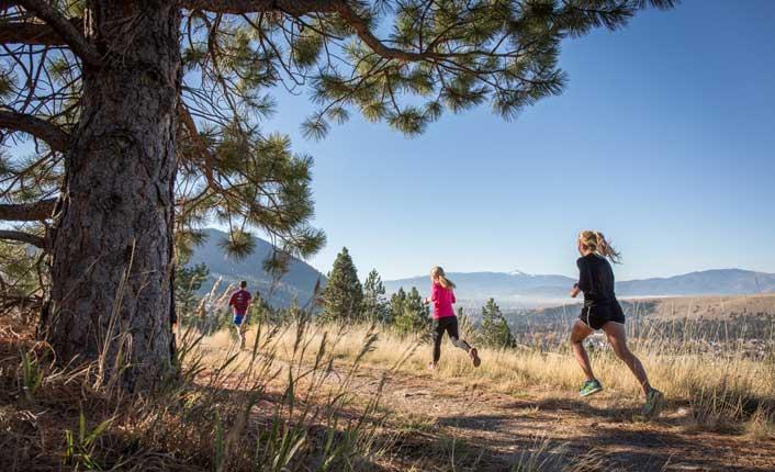 Runners on Mount Jumbo.