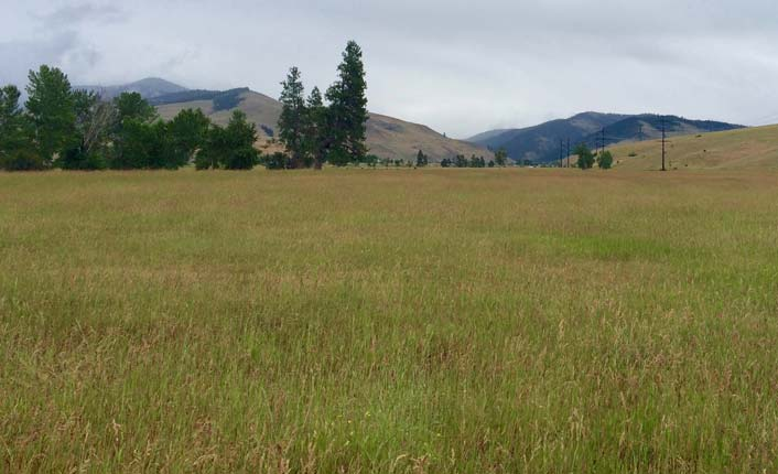 The Oxbow Cattle Company easement. Photo by Five Valleys staff.