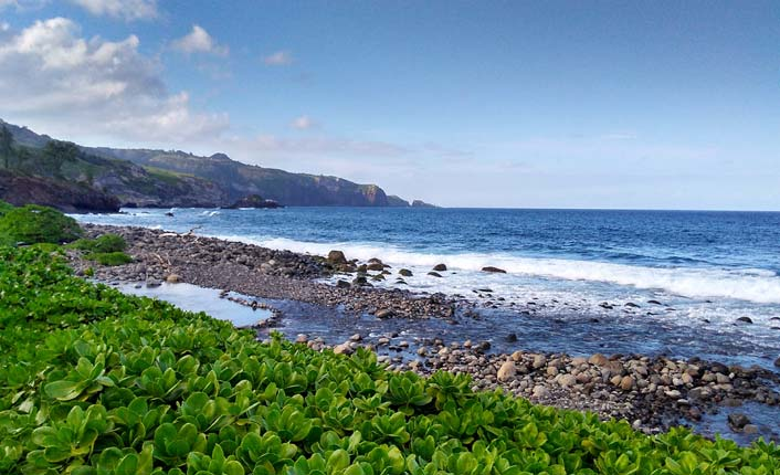 It might not be ideal for sunbathing, but the Refuge's reef and rugged coastline are prime habitat for fish.