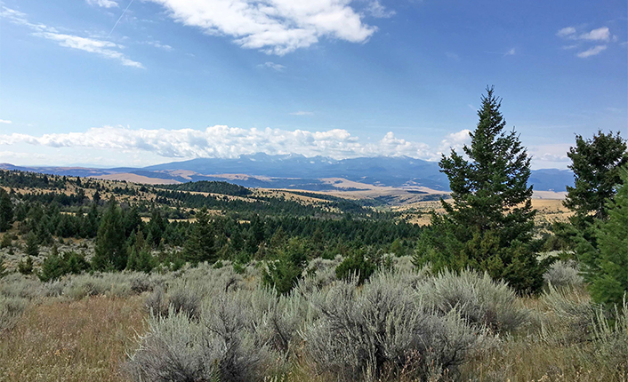 The Graveley Ranch includes a wide variety of habitat types, and some pretty great vistas.