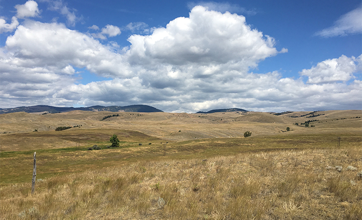The Graveley ranch includes sweeping high montane grasslands.