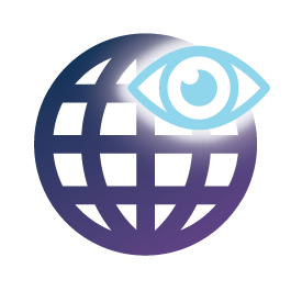 Global Report Icon