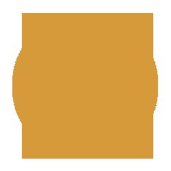 pictogram Skype