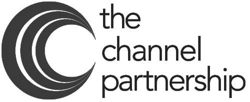Insight101 - the channel partnership logo