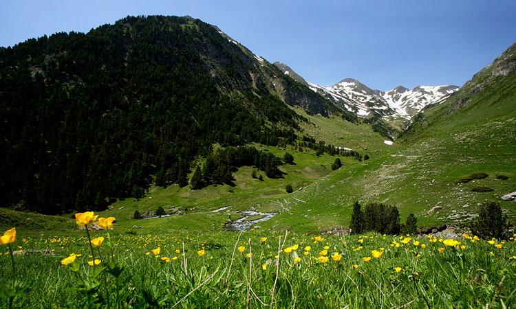 Summer hiking holidays
