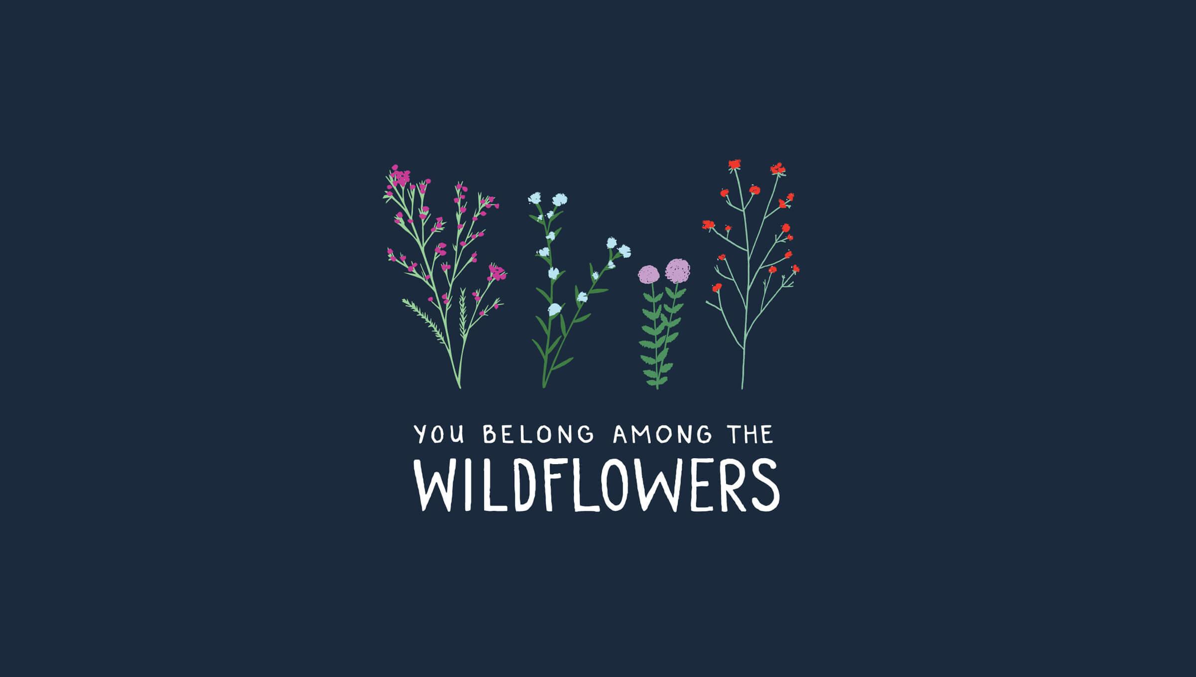 Mariel Feldman illustration wildflowers