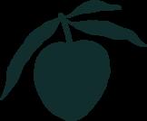 Plum Design Studio logomark