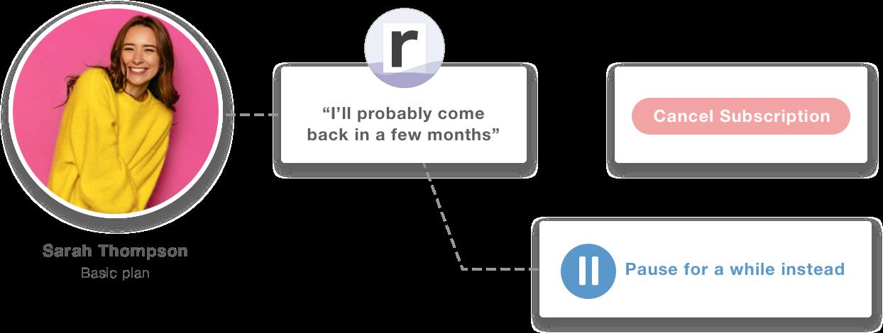 Screenshot of Raaft's pausing interface