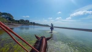 best surfing in panama