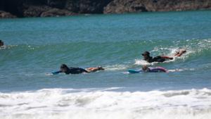 panama surf season