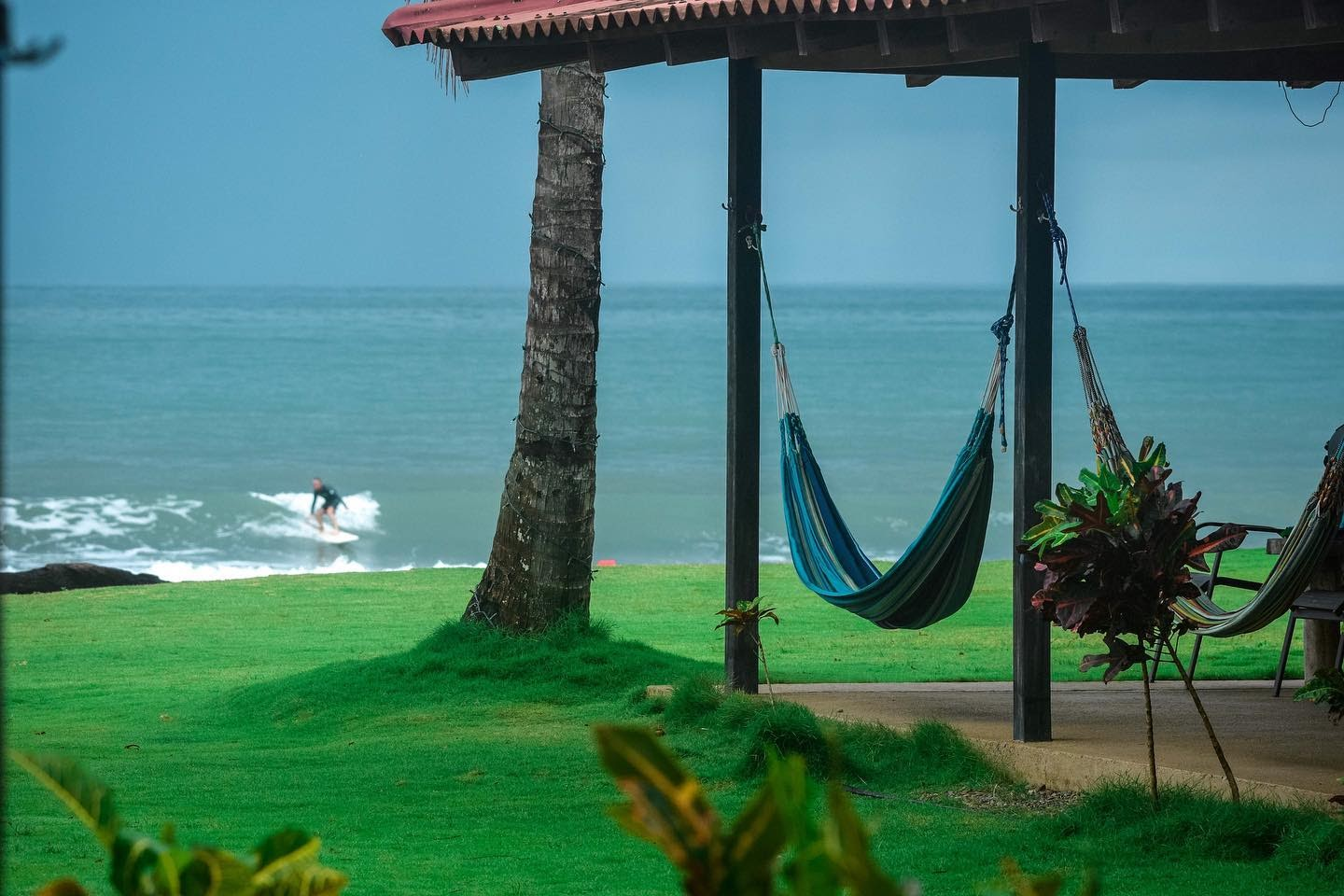 picture of hammocks with surfer catching a wave in the background
