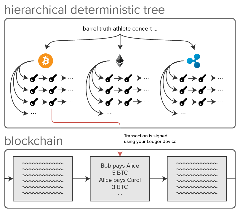 Hierarchicale Deterministic Tree