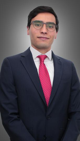 Ortega Garrido