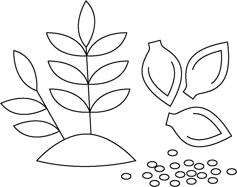 Bio Active Compounds Icon