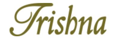 B&E Client - Trishna Logo