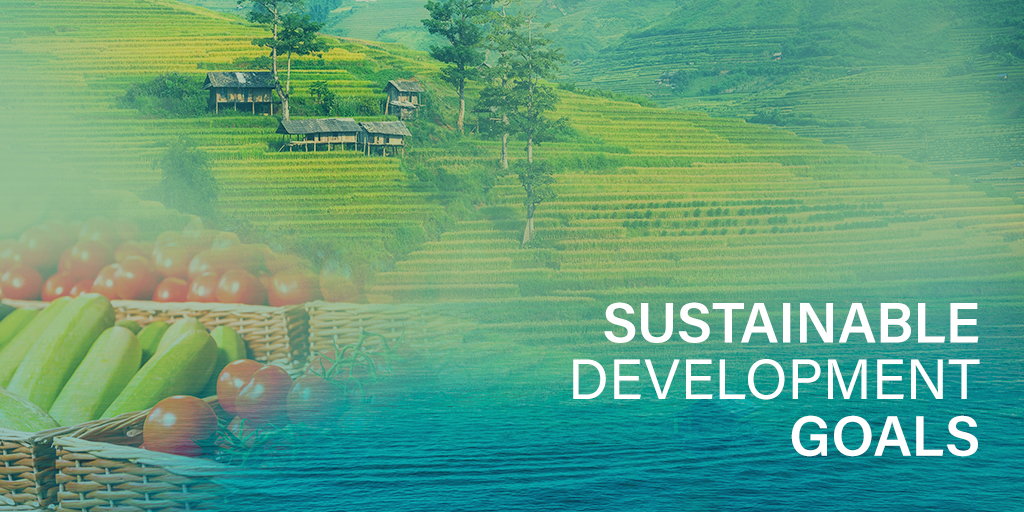 How Sustainable Agriculture Contributes to the UN Sustainable Development Goals