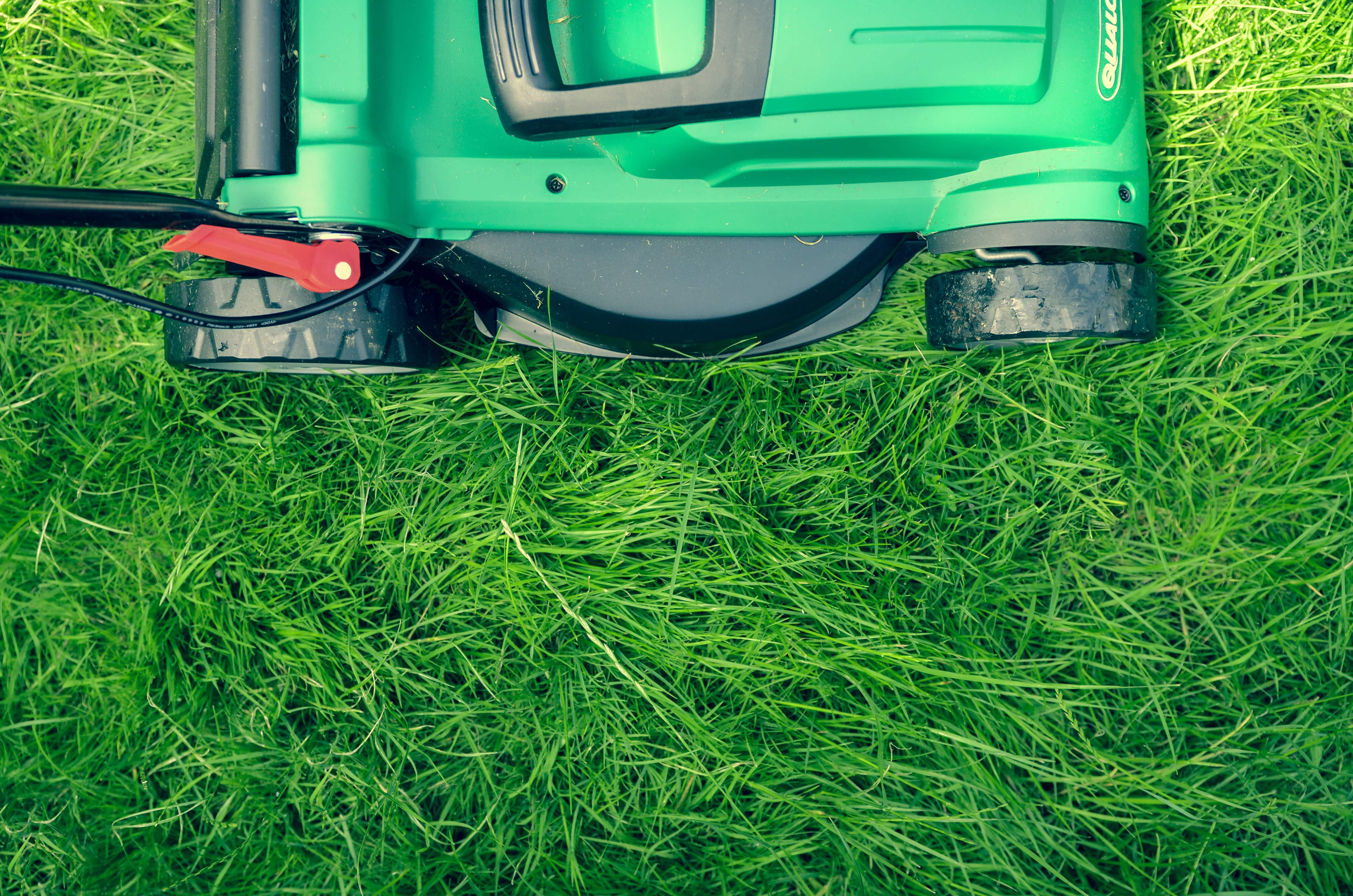 Photo of a lawnmower and grass