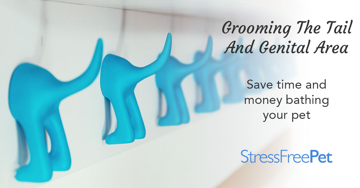 Grooming The Tail and Genital Area | Stress Free Pet