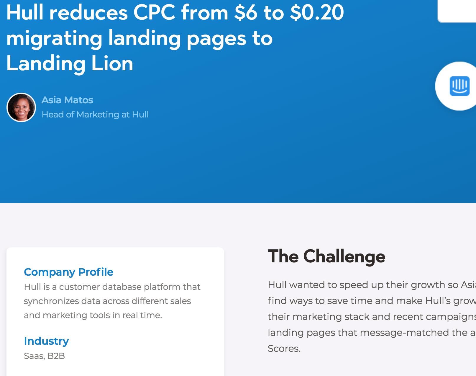 Landing Lion screen shot: client case studies