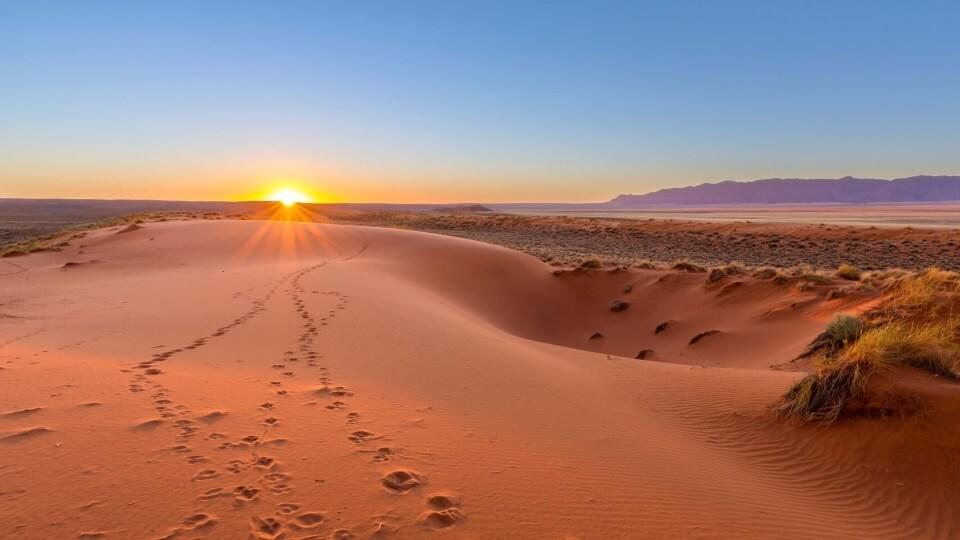 GREEN KALAHARI - vom mächtigen Orange River durchschnitten, ist eine üppige Oase in der großen Kalahari-Wüste.