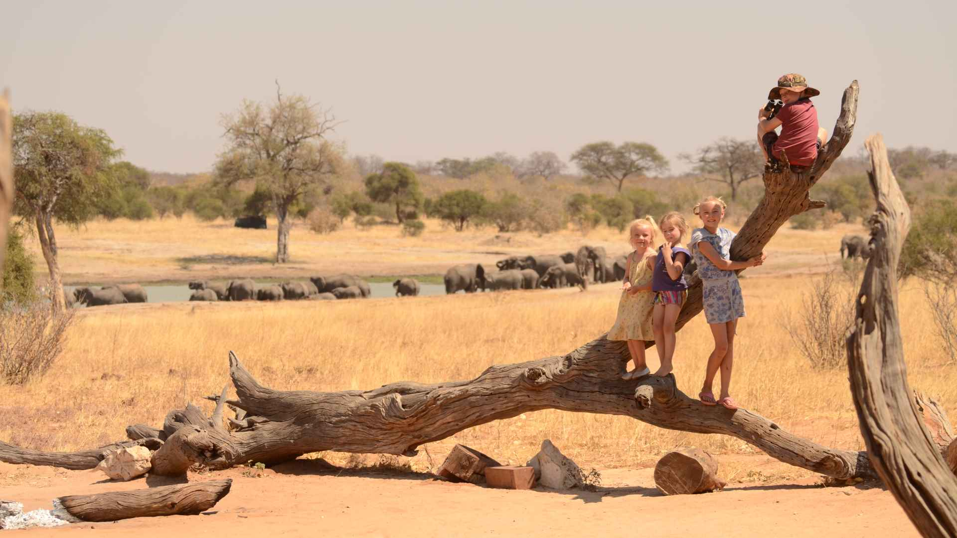 Family Journey - Kids on game drive - IMVELO Safari Lodge