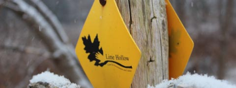 Trail Marker at Lime Hollow