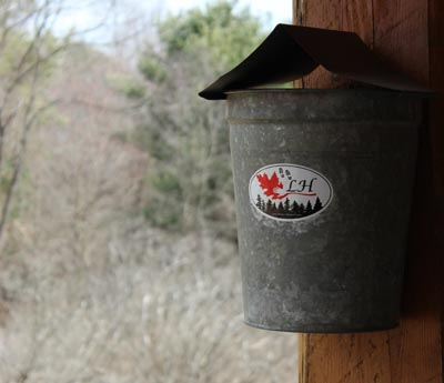 Bucket for Maple Sap