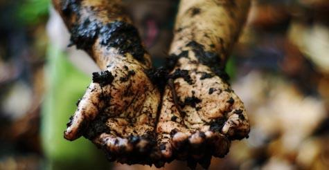 Kid's muddy hands at camp