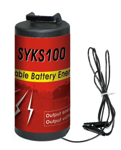 HKS100 Energizer