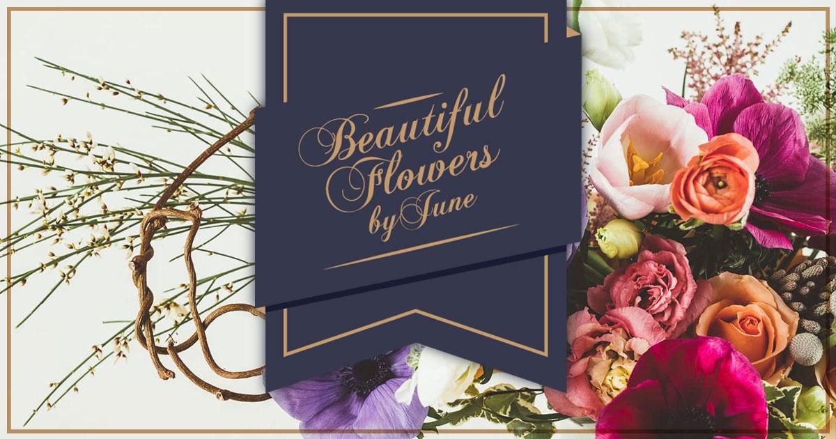 Beautiful flowers by june mightylinksfo