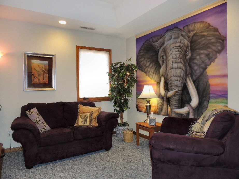 "The Santé Group ""Elephant"" Therapy Room"