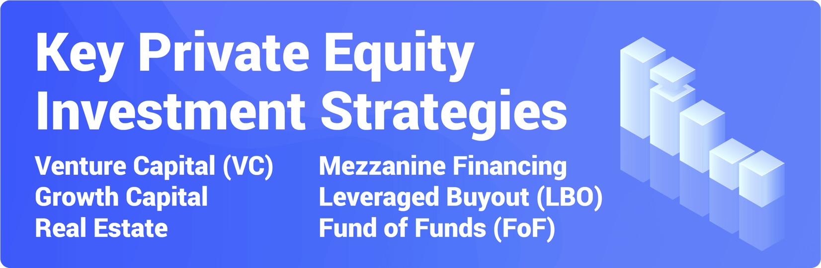 Private Equity Investment Strategies