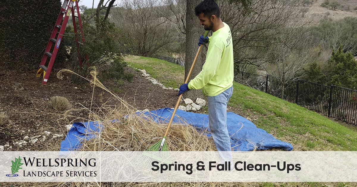 spring and fall yard clean up service