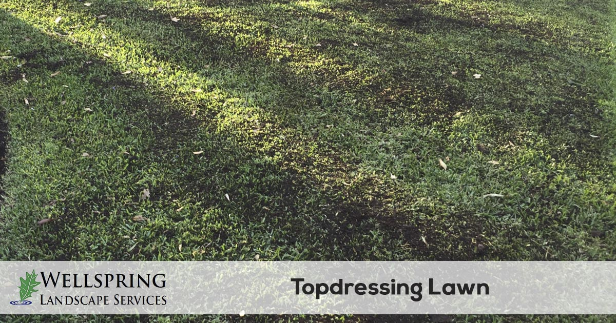 top dressing service
