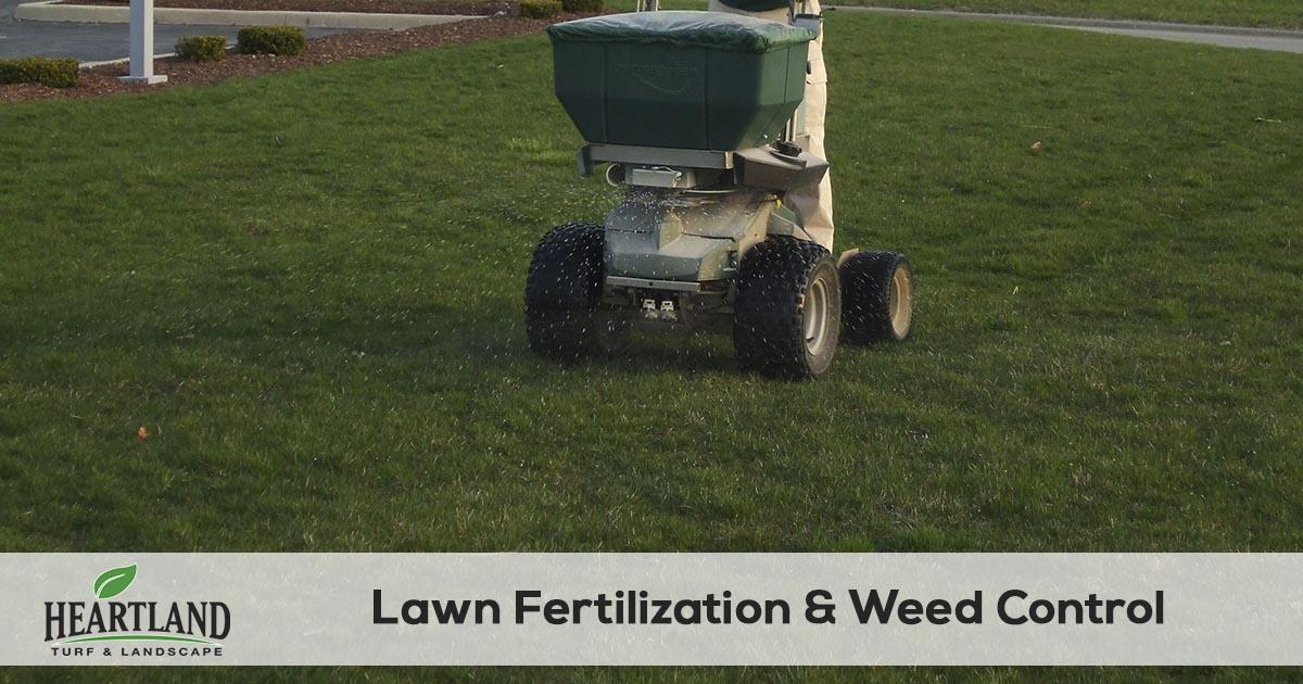 lawn fertilization and weed control