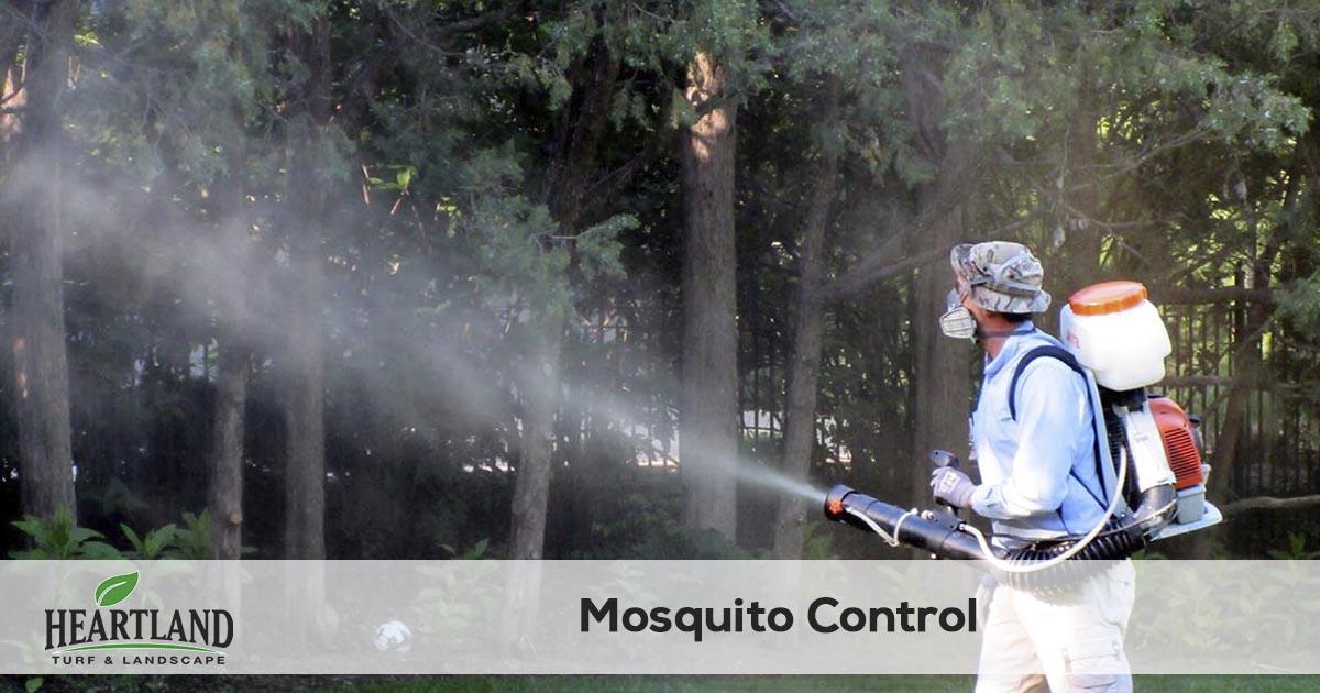 mosquito spraying service