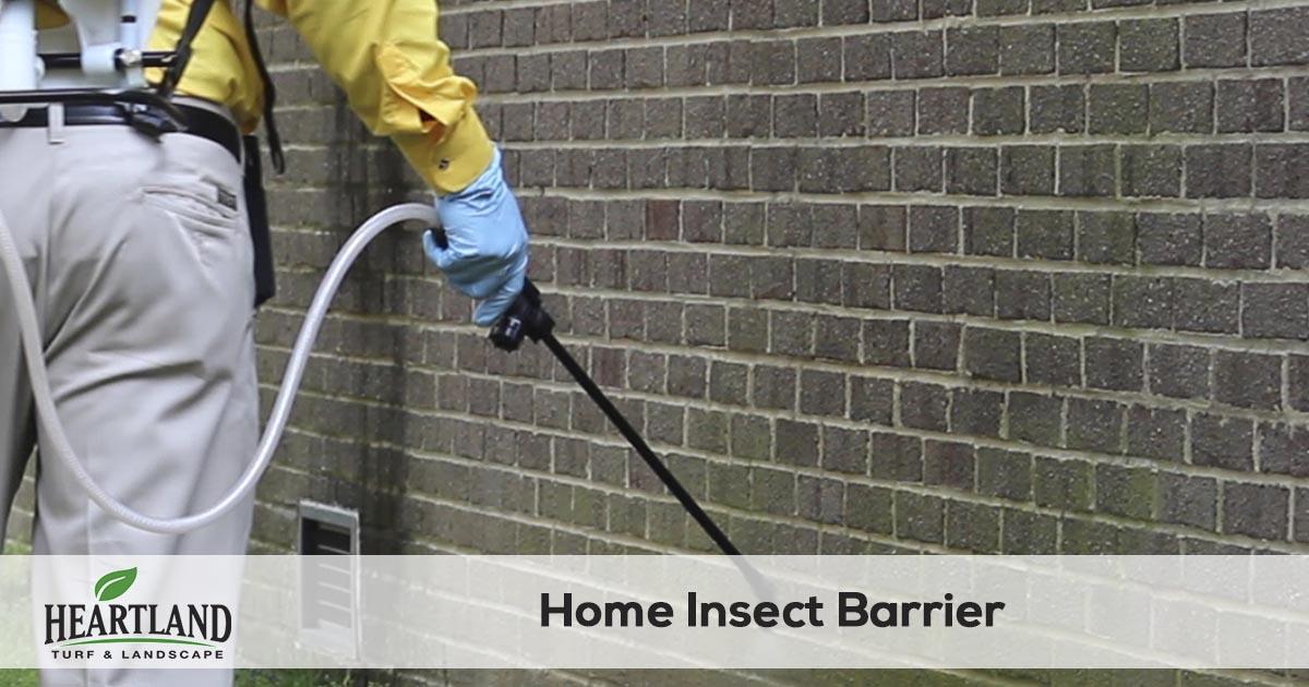 pest control spraying service
