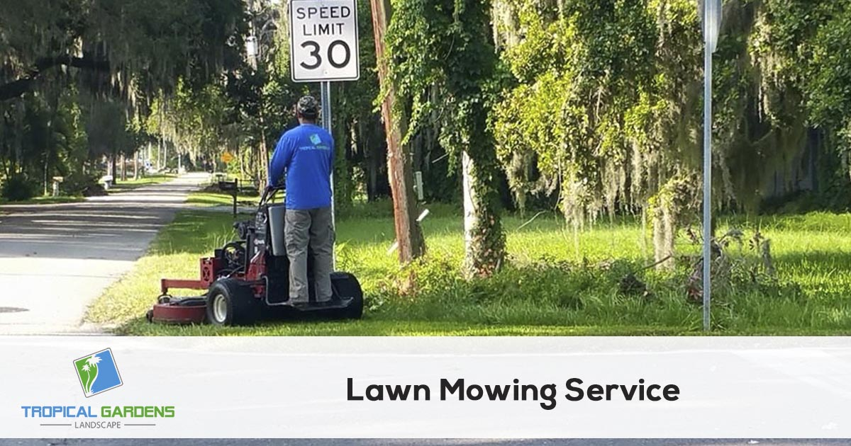 grass mowing service in sarasota florida