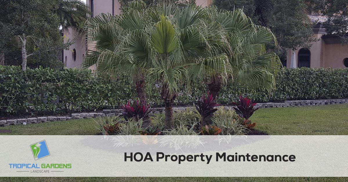 Home owners association lawn care in sarasota florida