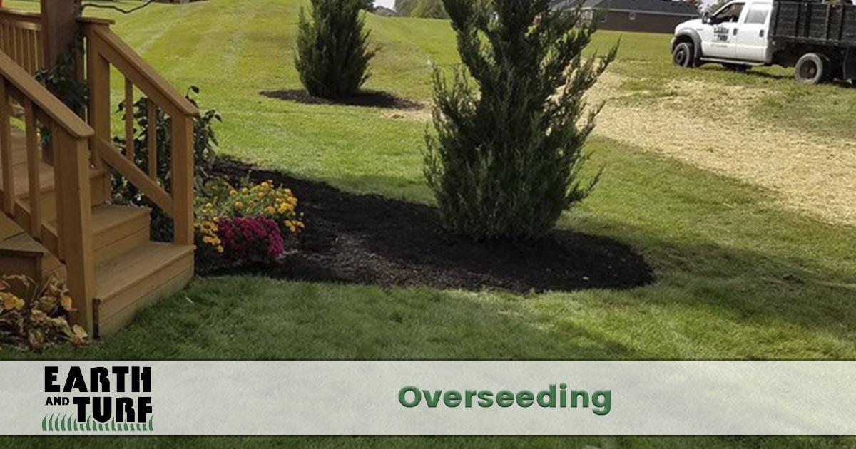 Lawn overseeding company