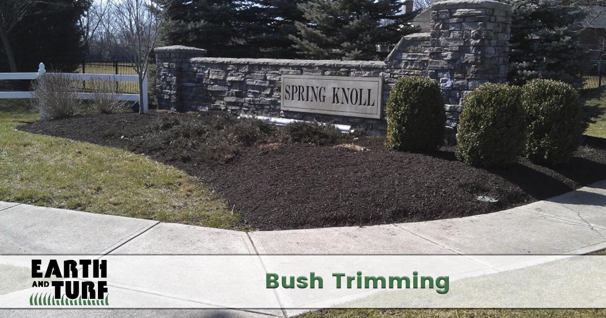 shrub and bush trimming