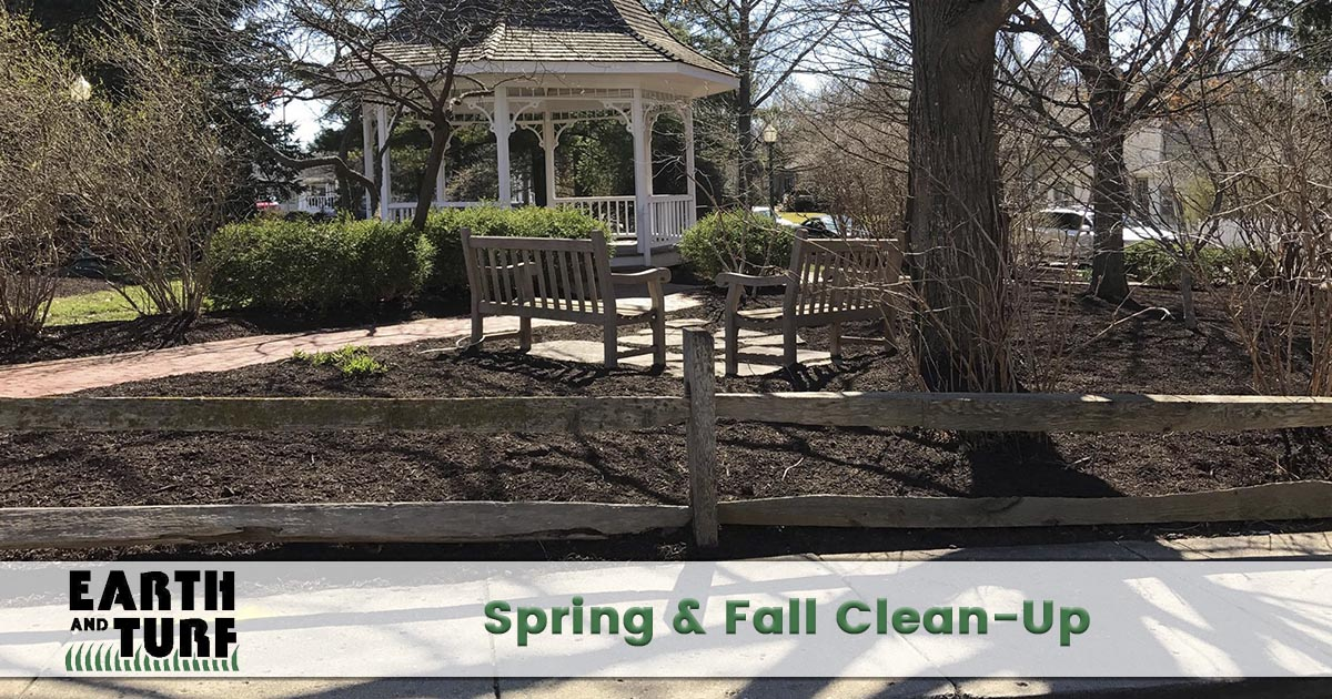 spring and fall clean up service