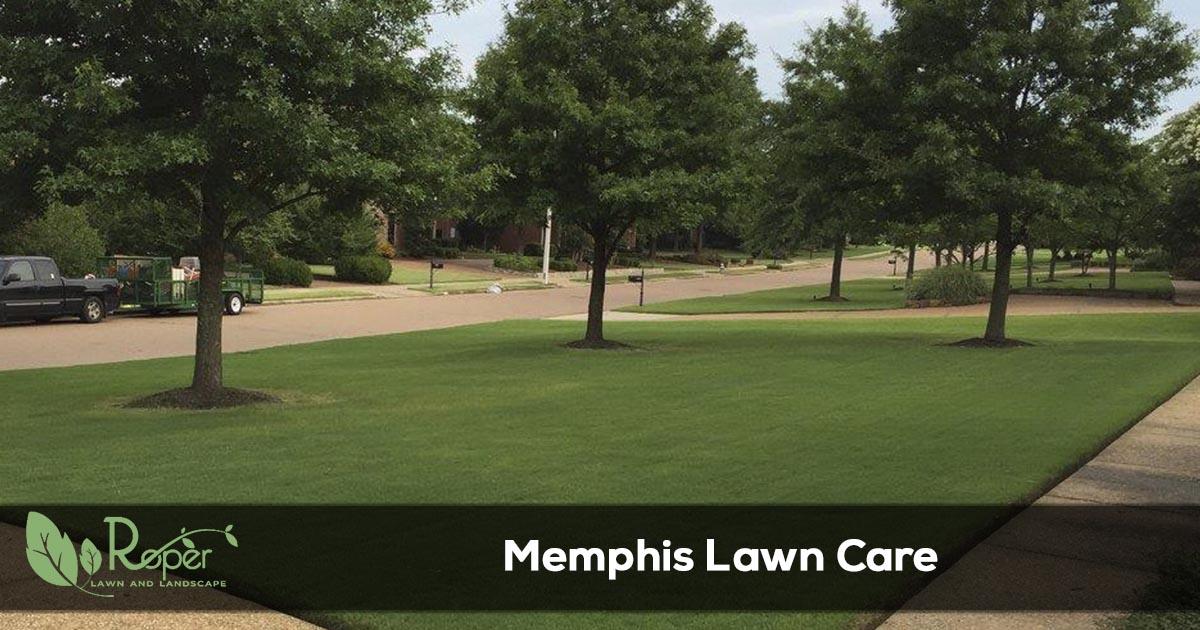 Memphis Lawn Care & Landscaping Service