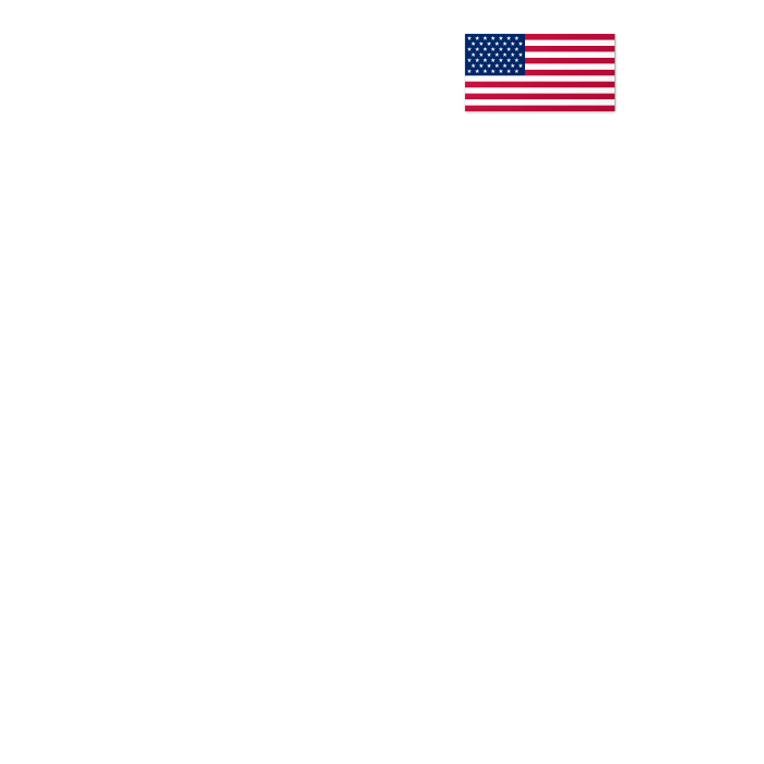 Hands holding a House with the American Flag